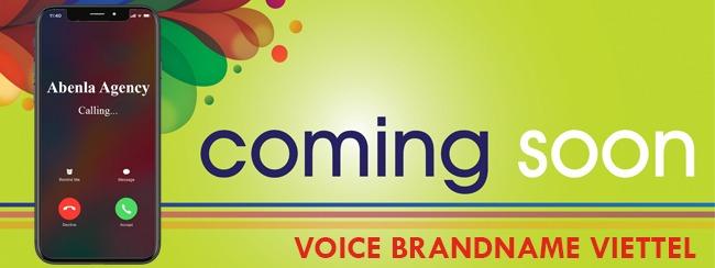 voice brandname viettel